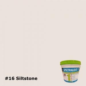 16 Siltstone