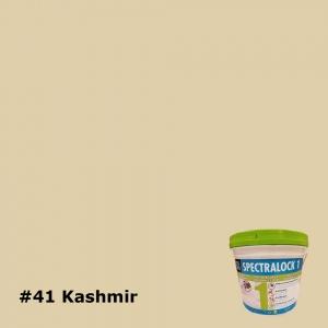 41 Kashmir