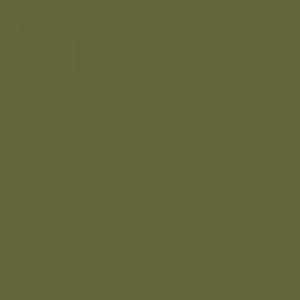 Olive Bright