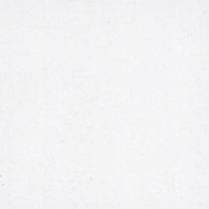 Arctic White Matte