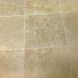 """4"""" x 4"""" Honed Field Tile"""